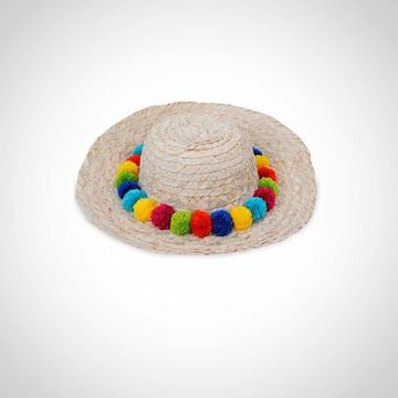 Picture of Hat with colored poms